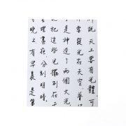 מחברת בראשית – סינית – מבט פרונטלי