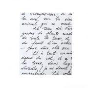 מחברת בראשית – צרפתית – מבט פרונטלי